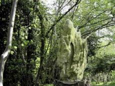 Limestonenrcircle